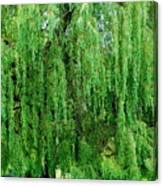 Green Tree View. Canvas Print