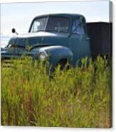 Green Truck In The Green Grass Canvas Print