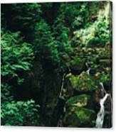 Green Waterfall Canvas Print