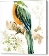 Green Wild Bird Canvas Print