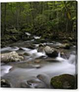 Greenbrier In The Great Smoky Mountains Canvas Print
