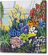 Greenhouse Flowers With Blue And Red Canvas Print