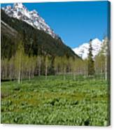 Greens And Blues Of The Maroon Bells Canvas Print