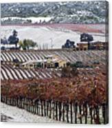 Greenville Vineyard In Snow Canvas Print