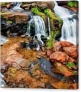 Greenville's Reedy River Falls, South Carolina Canvas Print