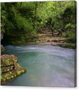 Greer Spring Canvas Print
