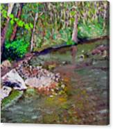 Gressy Creek Canvas Print