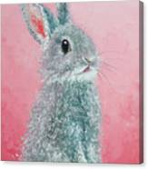 Grey Easter Bunny Canvas Print