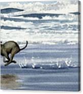 Greyhound At The Beach Canvas Print