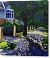 Griffith Avenue Through The Trees Canvas Print