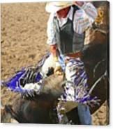 Gripping Bull Rider ... Montana Art Photo  Canvas Print