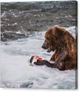 Grizzly Bear Enjoying Lunch Canvas Print