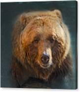 Grizzly Bear Portrait Canvas Print