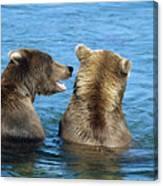 Grizzly Bear Talk Canvas Print