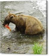 Grizzly Great Catch Canvas Print