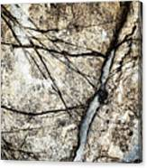 Grooves In An Old Limestone Canvas Print