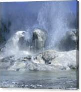 Grotto Geyser - Yellowstone National Park Canvas Print
