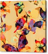 Group Of Butterflies With Colorful Wings Canvas Print