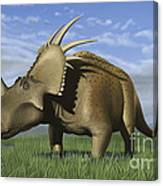 Group Of Dinosaurs Grazing In A Grassy Canvas Print