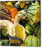 Group Of Gourds Expressionist Effect Canvas Print