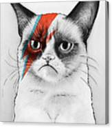 Grumpy Cat As David Bowie Canvas Print
