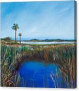 Guana River Lll Canvas Print