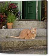 Guarding The Door Canvas Print
