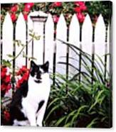 Guarding The Rose Garden Canvas Print