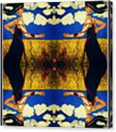 Guiar-symmetrical Art Canvas Print
