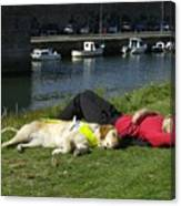 Guide Dog Relaxing Canvas Print