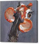 Guinea Love Canvas Print