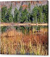 Guinea Pond - Sandwich New Hampshire Usa Canvas Print