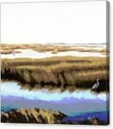 Gulf Coast Florida Marshes I Canvas Print