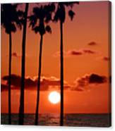 Gulf Coast Sunset Canvas Print