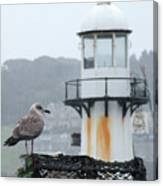Gull And Lighthouse Canvas Print