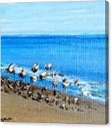 Gulls At Play Canvas Print