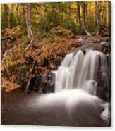 Gully Lake Cascades #1 Canvas Print