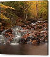 Gully Lake Trail Cascades #2 Canvas Print