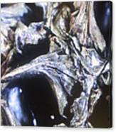 Gumball Canvas Print