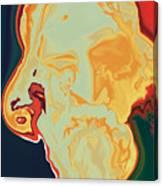 Gurudev Canvas Print