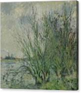 Gustave Loiseau 1865 - 1935 Willows, Edges Oise Or On The Banks Of The Oise Canvas Print