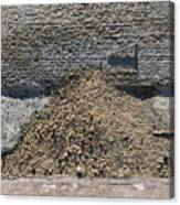 Gutter With Sand And Screw Canvas Print