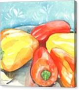Gypsy Peppers Canvas Print