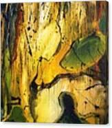 H11 Canvas Print