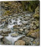 Haast Waterfall Canvas Print
