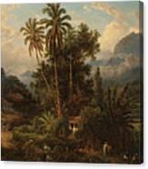 Hacienda De San Esteban De Puerto Cabello, Venezuela Canvas Print