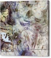 Hackthorn Fancy  Id 16099-082433-97661 Canvas Print