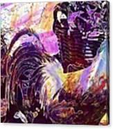 Hahn Hen Chicken Poultry Gockel  Canvas Print