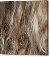 Hair Canvas Print
