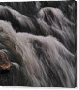 Hairy River Canvas Print